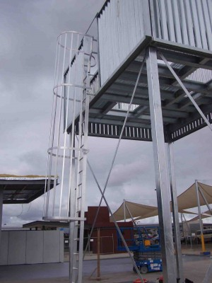 Cage Access Ladders
